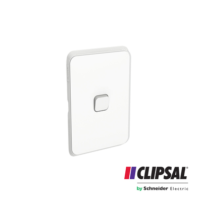 Flush Switch, 1 Gang, 1-Way/2-Way, Vertical Mount, 250V, 10AX